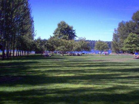 Park on Sammamish, Seattle, WA