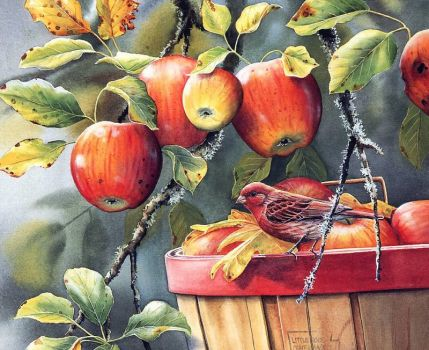 Apple Time & Finches
