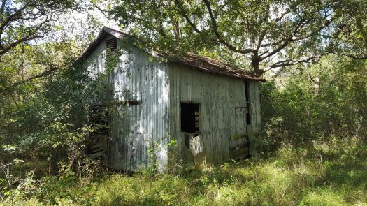 Abandoned Stable