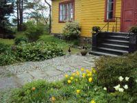 A duck family in Helsinki, near Suomenlinna