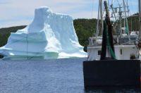 Bridgeport, Newfoundland & Labrador