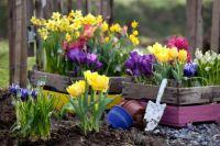 chic-spring-flower-garden-spring-flower-garden-ideas