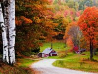 Theme: Farm Buildings - Vermont Sugar House and Shed in Autumn (not sugar season)
