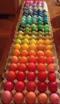 Many colours of eggs....xxxxx