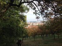 Castle Complex, Prague