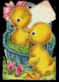 Sweet Easter Chicks