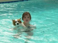 the pool and the puppy named opie and me
