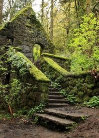 The Witch's Castle - Forest Park, Portland
