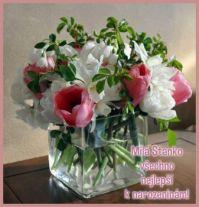 """Pro  -  for  ,,sthajkova""""  -  Happy birthday!"""