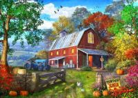 Pumpkin Farm by Dominic Davison