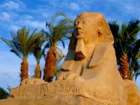 Egypt - Avenue of sphinxes, Luxor