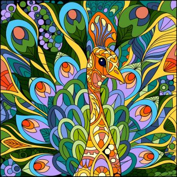 A colourful peacock