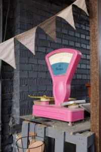 Old Pink Scale