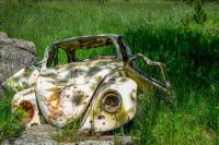 Old beetle rust grass abandoned