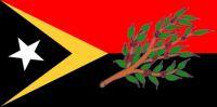 Fun With East Timorese Flags - Ermera - Medium