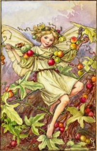 The White Bryony Fairy (mini)
