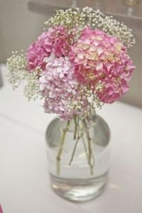 "Themes ""Flowers"" - Pink hydrangea"