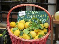 Monterosso lemons
