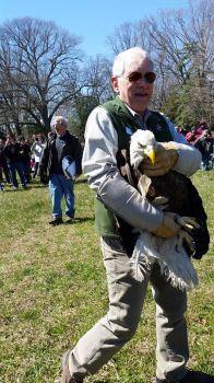 Bald Eagle Release 3/23/18