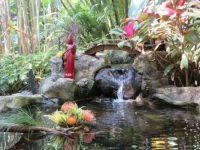 Sunken Gardens, St.Petersburg, FL