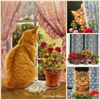 Cats, Windows, and Geraniums