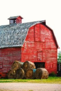 Red Barn & Hay Rounds