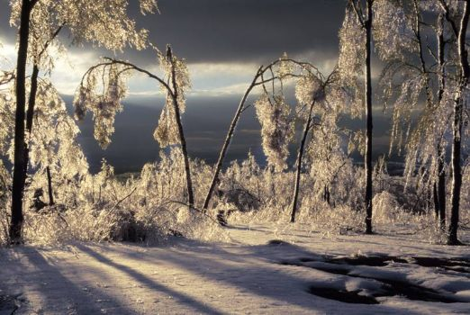 The Great Ice Storm of 1998