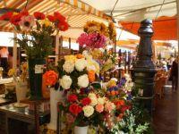 kvetinový trh v Nizze