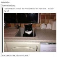 This is NOT my sink