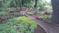 procházka v botanické zahradě