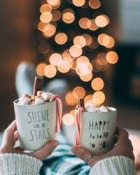 Mugs, cinnamon and candy canes