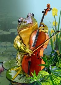 Humorous scene frog-playing-cello-in-lily-pond