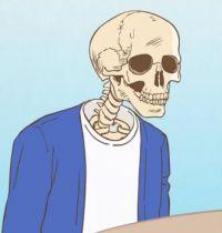 Skull-Face Bookseller Honda 2