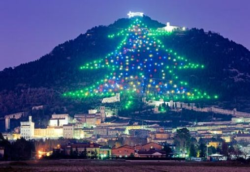 The  world's largest Christmas tree