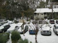 Snow Day on Hilton Head Island