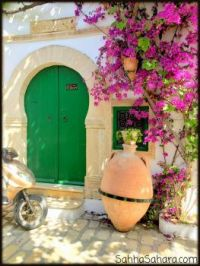 bougainvillia entrance, Tunisia