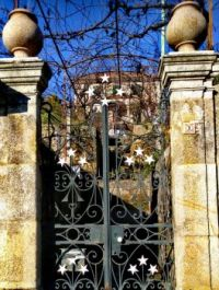Starry Gate