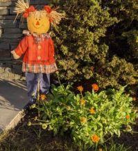 Mrs. Un-scareycrow