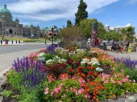 Flower bed and totem pole in front of the BC Parliament Building in Victoria