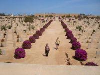 El Alamein cemetery Egypt