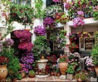 horta urbana flores
