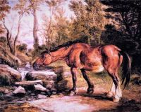 A Horse Drinking at a Stream (1838)