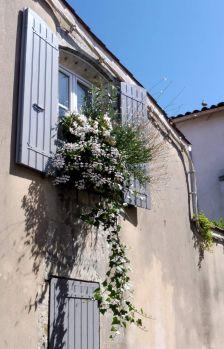 in France
