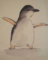 Little Penguin Watercolour