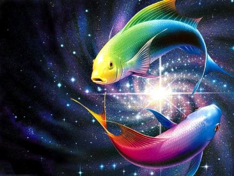 Fish in Space