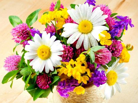 flowers for today