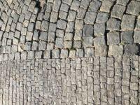 Cobblestoned path