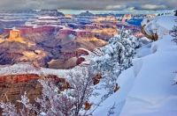 The Grand Canyon currently has 6 inches of snow