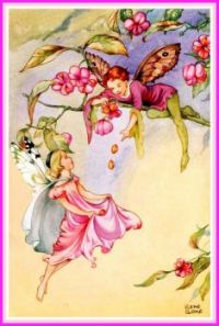 The Spindle Berry Fairies (smaller size)