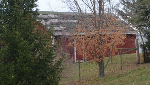 Old Barn  / At the Daughters